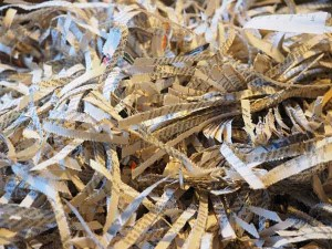 work experience should be about more than shredding